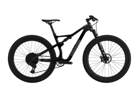 2021 Cannondale Scalpel Carbon 2 | Graphite