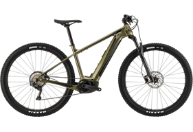 2021 Cannondale Trail Neo 2