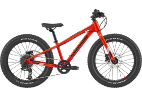 2020 Cannondale Cujo Race 20+