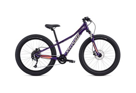 2019 Specialized Riprock Comp 24""
