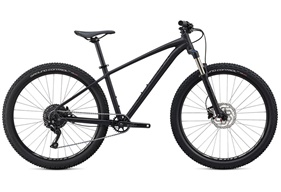 2020 Specialized Pitch Expert X1