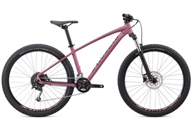 2020 Specialized Pitch Expert X2