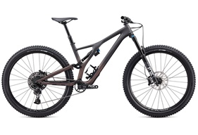 2020 Specialized Stumpjumper Evo Comp Carbon 29